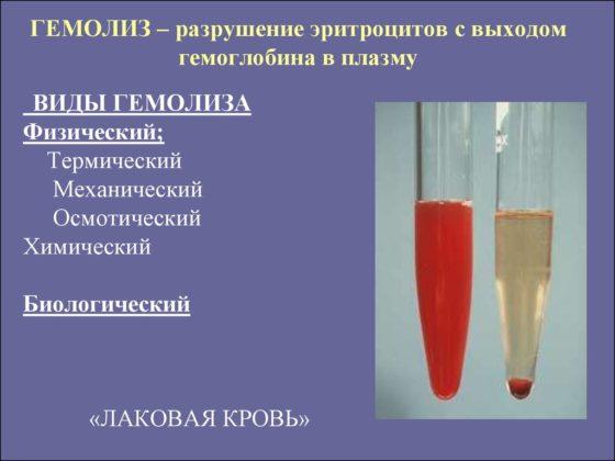 лаковая кровь