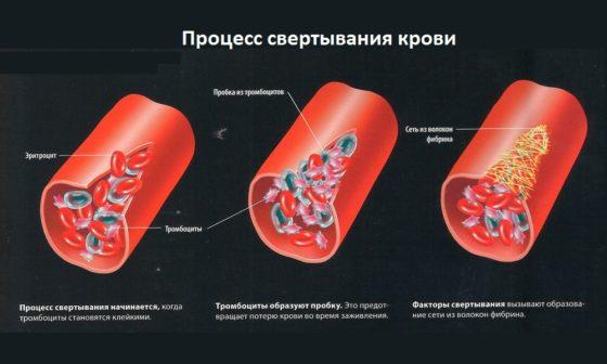 Сворачивание крови