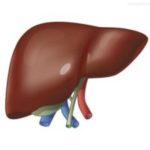 Почему повышается ГГТ в крови